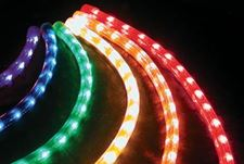 Picture for category Rope Light